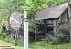 The Wild Plum Tea Room